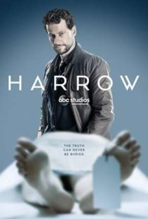 Harrow - 1ª Temporada